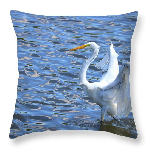 Throw Pillow featuring the photograph The Walk by Tony Umana
