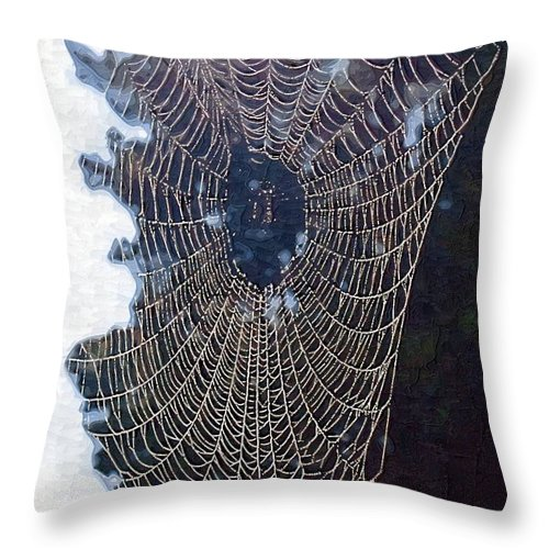Web Throw Pillow featuring the photograph The Web by Donna Bentley