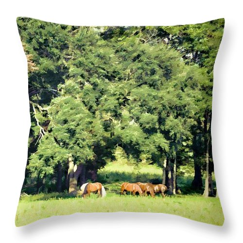 Animals Throw Pillow featuring the photograph The White Stallion by Jan Amiss Photography