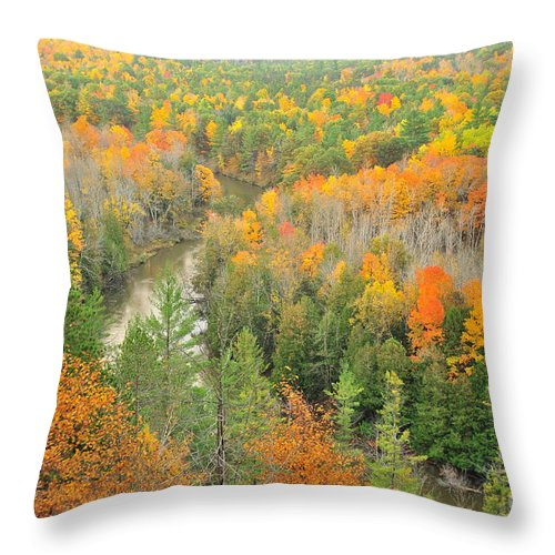 High Rollaways Throw Pillow featuring the photograph The Winding Manistee River by Terri Gostola
