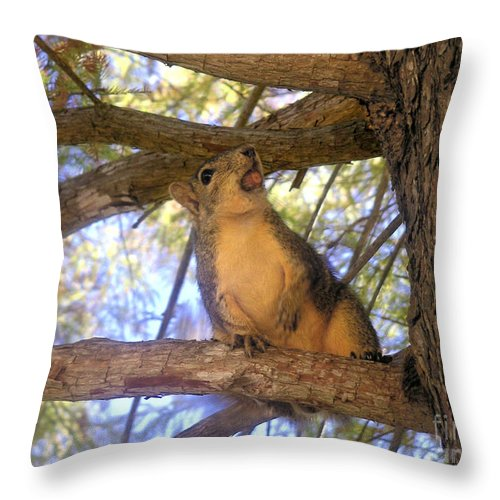 Nature Throw Pillow featuring the photograph The Winner by Lucyna A M Green