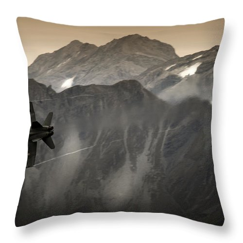 Axalp Throw Pillow featuring the photograph The Winter Bird by Angel Ciesniarska