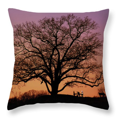 Gettysburg Throw Pillow featuring the photograph The Witness by Jen Goellnitz