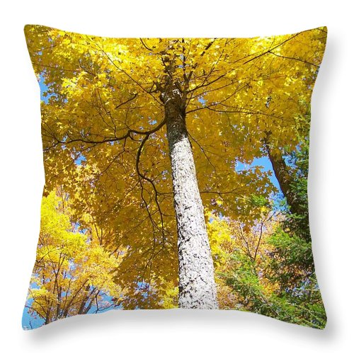 Autumn Throw Pillow featuring the photograph The Yellow Umbrella - Photograph by Jackie Mueller-Jones