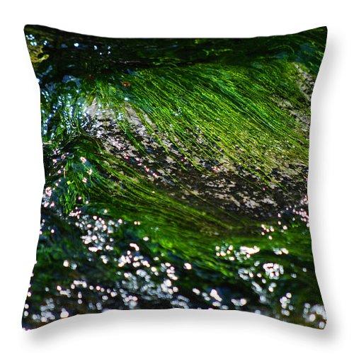 Becky Furgason Throw Pillow featuring the photograph #thequieteryoubecomethemoreyoucanhear by Becky Furgason