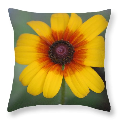 Landscape Throw Pillow featuring the photograph They Call Me Mellow Yellow. by David Lane