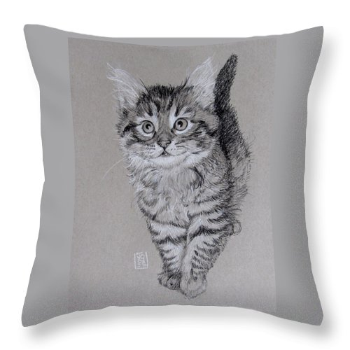 Cat Throw Pillow featuring the drawing Thing One by Debra Jones