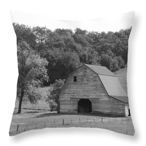 Landscape Throw Pillow featuring the photograph Third Eye Blind by David Dunham