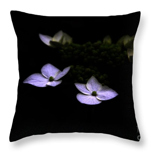 Hydrangea Throw Pillow featuring the photograph This Little Light Of Mine by Amanda Barcon