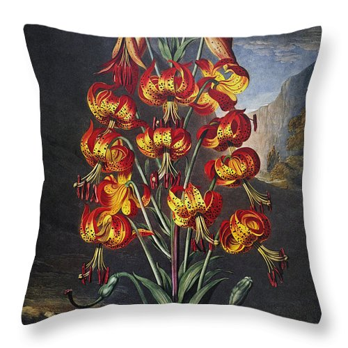 1799 Throw Pillow featuring the photograph Thornton: Superb Lily by Granger