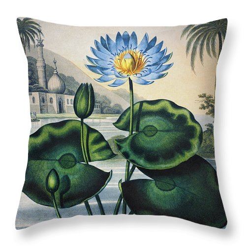 1804 Throw Pillow featuring the photograph Thornton: Water Lily by Granger