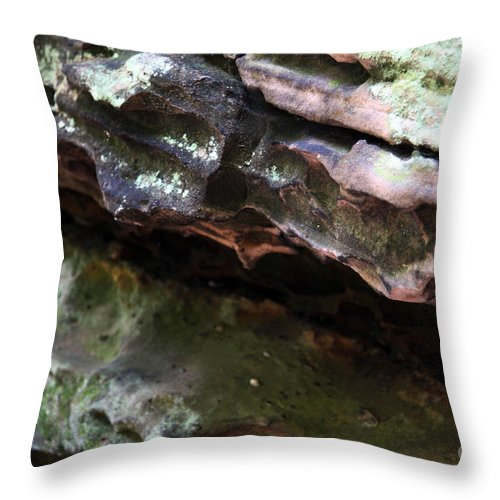 Mountainous Throw Pillow featuring the photograph Thoughts by Amanda Barcon