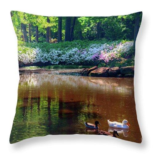 Tamyra Throw Pillow featuring the photograph Three Ducks At The Azalea Pond by Tamyra Ayles