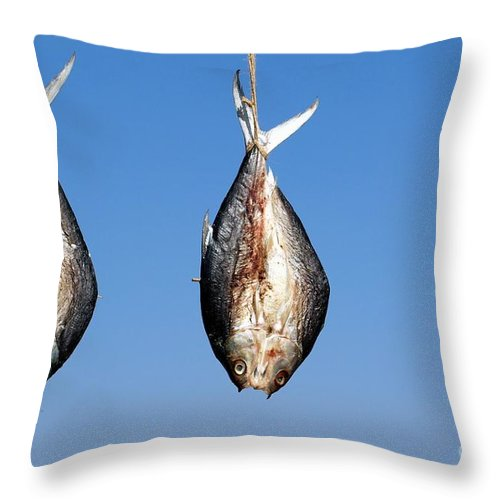 Fish Throw Pillow featuring the photograph Three Fish Drying In The Sun by Yali Shi