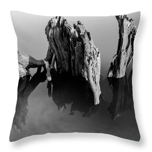 Driftwood Throw Pillow featuring the photograph Three Kings by Zachary Bale