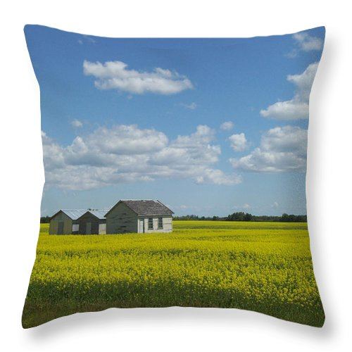 Nature Throw Pillow featuring the photograph Three Of A Kind by Mary Mikawoz