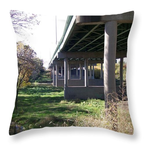 Landscape Throw Pillow featuring the photograph Three Pathways by Stephen King