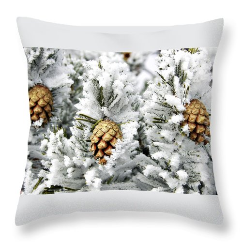 Frosty Throw Pillow featuring the photograph Three Pinecones by Marilyn Hunt