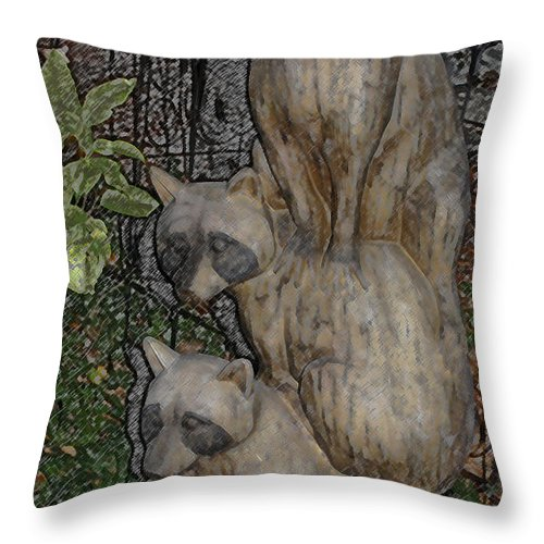 Raccoon Throw Pillow featuring the photograph Three Raccoons by Arline Wagner