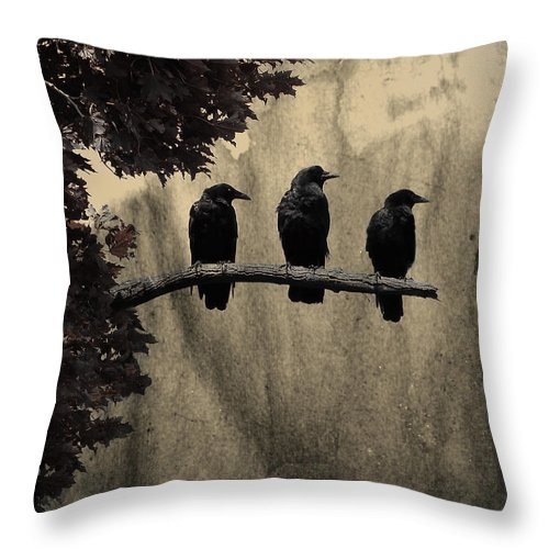 Dark Throw Pillow featuring the photograph Three Ravens Branch Out by Gothicrow Images
