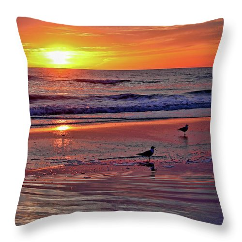 Seascape Throw Pillow featuring the photograph Three Seagulls On A Sunset Beach by HH Photography of Florida
