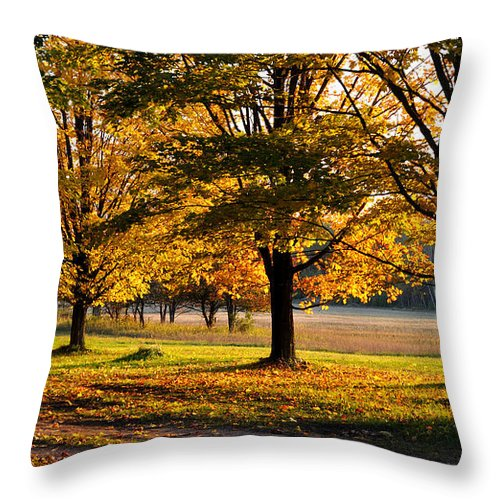 Fall Throw Pillow featuring the photograph Three Sisters by Tim Nyberg