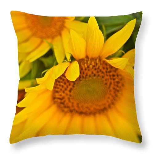 Yellow Throw Pillow featuring the photograph Three Sunflowers by Nadine Rippelmeyer