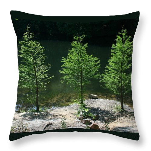 Trees Throw Pillow featuring the photograph Three Trees Of Ohio by Dawn Downour