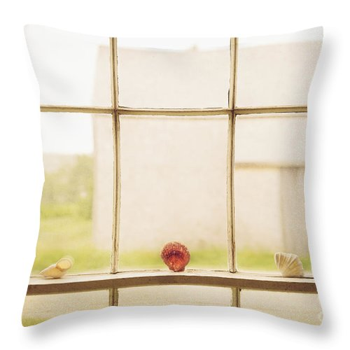Our Town Throw Pillow featuring the photograph Three Window Shells by Craig J Satterlee