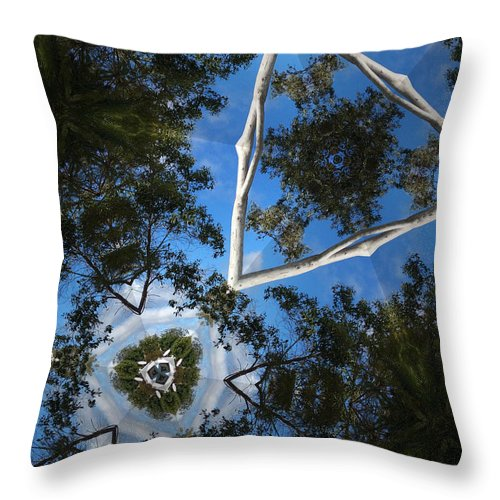 Photographic Throw Pillow featuring the photograph Through The Canopy 1 by Sandy Aldcroft