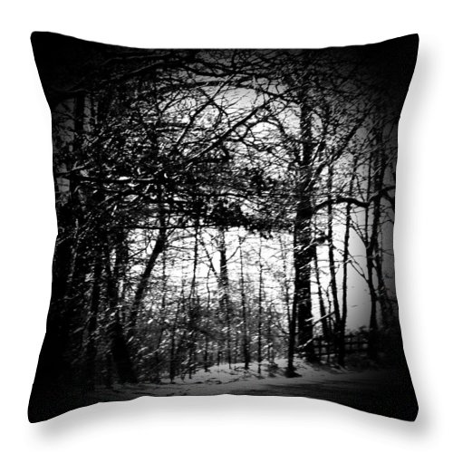 Trees Throw Pillow featuring the photograph Through The Lens- Black And White by Charleen Treasures