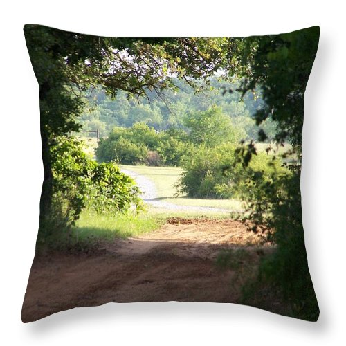 Woods Throw Pillow featuring the photograph Through The Woods by Gale Cochran-Smith