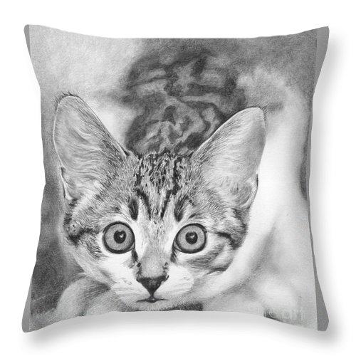 Cat Throw Pillow featuring the drawing Tiddles by Karen Townsend