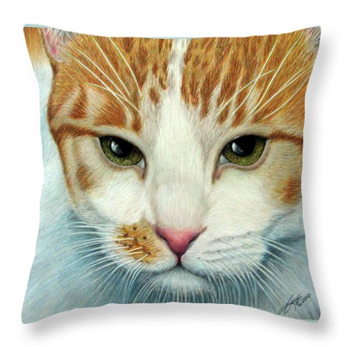 Kittens Throw Pillow featuring the drawing Tiger Lily by Beverly Fuqua