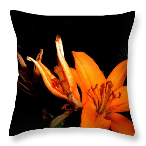 Tiger Lily Throw Pillow featuring the photograph Tiger Lily by Joanne Smoley