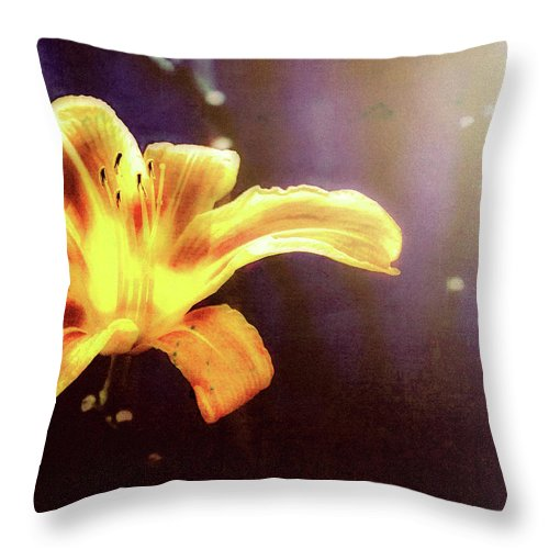 Flowers Throw Pillow featuring the photograph Tiger Lily On Waters Edge by Bob Orsillo