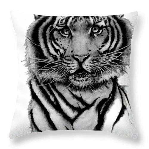 Tiger Throw Pillow featuring the drawing Tiger Tiger by Duke Windsor