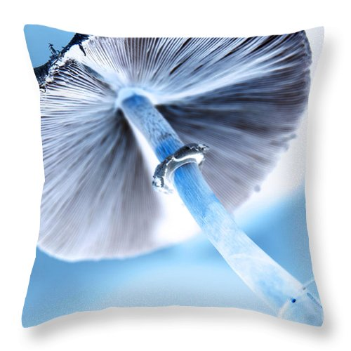 abstract Art Throw Pillow featuring the photograph Tilt A Whirl by Amanda Barcon