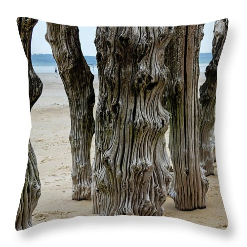 Rough Throw Pillow featuring the photograph Timber Textures Lv by Shirley Mitchell