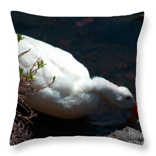 Duck Throw Pillow featuring the painting Time For A Drink by RC DeWinter
