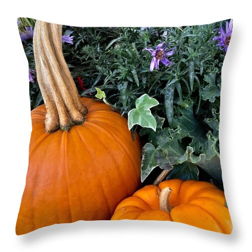 Pumpkins Throw Pillow featuring the photograph Time For Pumpkins In The Flower Beds by Patricia E Sundik