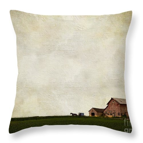 Amsih Throw Pillow featuring the photograph Time Forever Frozen by AJ Yoder