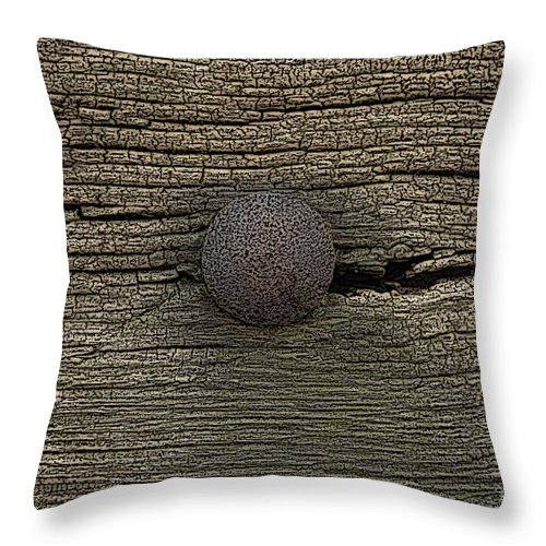 Time Throw Pillow featuring the painting Time Goes By by Steve K