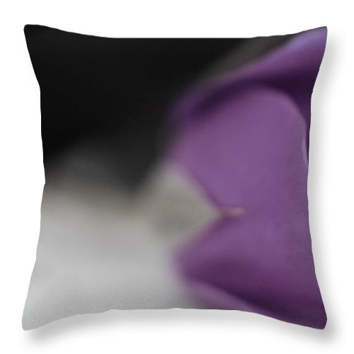 Timeless Throw Pillow featuring the photograph Timeless by The Art Of Marilyn Ridoutt-Greene