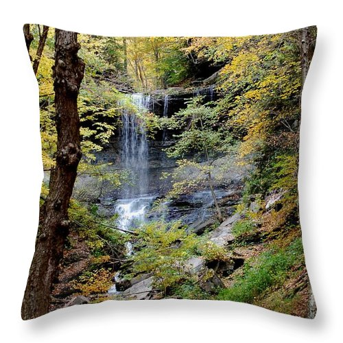 Digital Photograph Throw Pillow featuring the photograph Tinker Falls by David Lane
