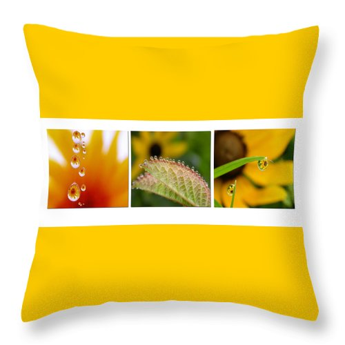 Dew Throw Pillow featuring the photograph Tiny Miracles by Linda Murphy