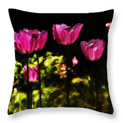 Tulips Throw Pillow featuring the photograph Tiptoe Through The Tulips by Bill Cannon