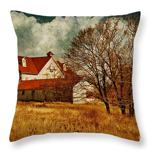 Barns Throw Pillow featuring the photograph Tired by Lois Bryan