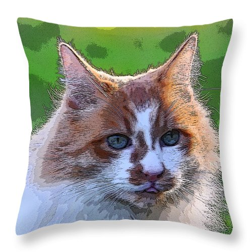 Cat Throw Pillow featuring the photograph TJ by Alan C Wade