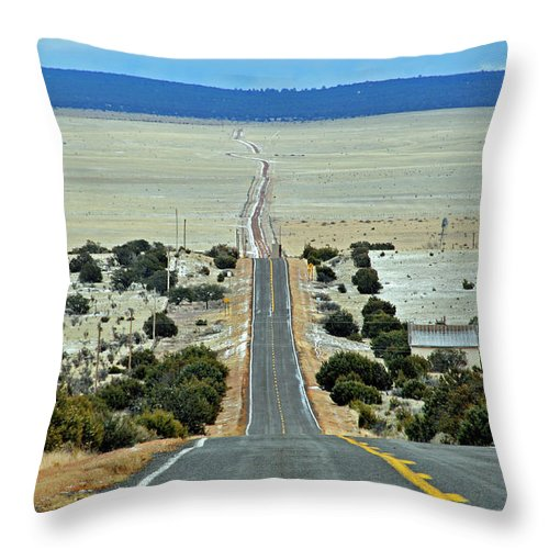 Road Throw Pillow featuring the photograph To Eternity by David Arment
